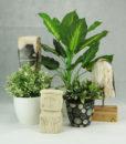 mett-mari-inspiration-dekoration-hvid-musling-stenmand-forstenet-trae-plante-370x436