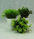 Mett-mari-dekoration-kunstig-plante-potte-groen-ass-lille-370x436-1